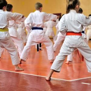 Karate (Thai Chi)